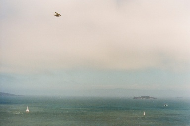 From the Golden Gate Bridge.