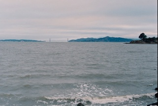 From the Eastshore State Park, Berkeley.
